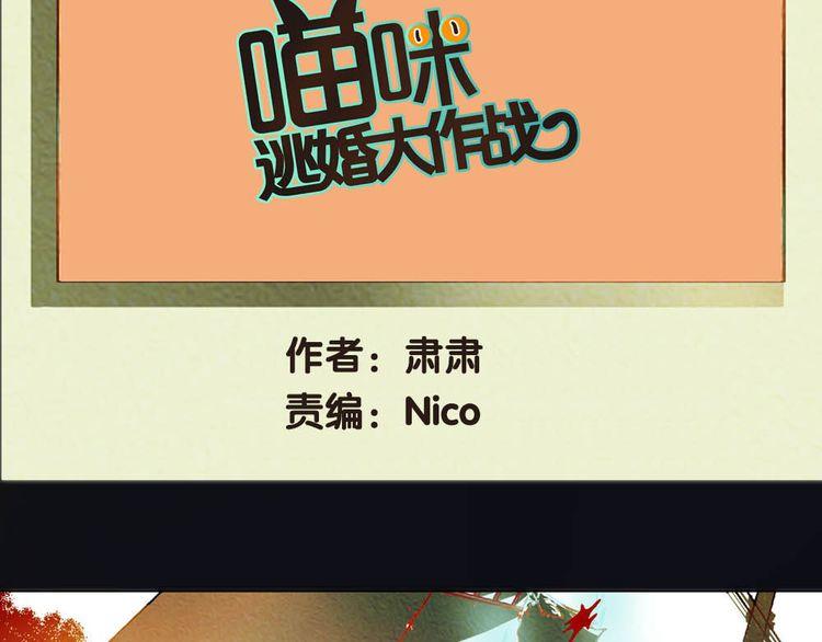 连载《喵咪逃婚大作战》第7话 及时相救
