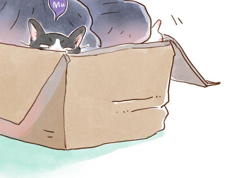 连载《有猫在》我错了,快回来~